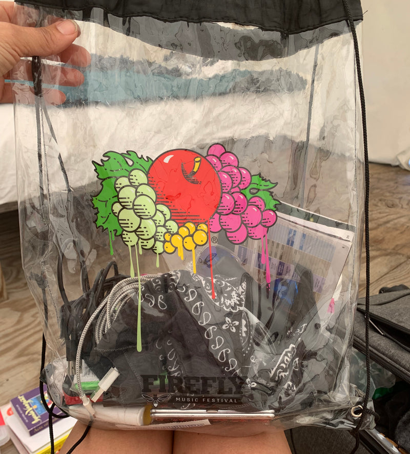 Festival Purses - The Clear Plastic Trend