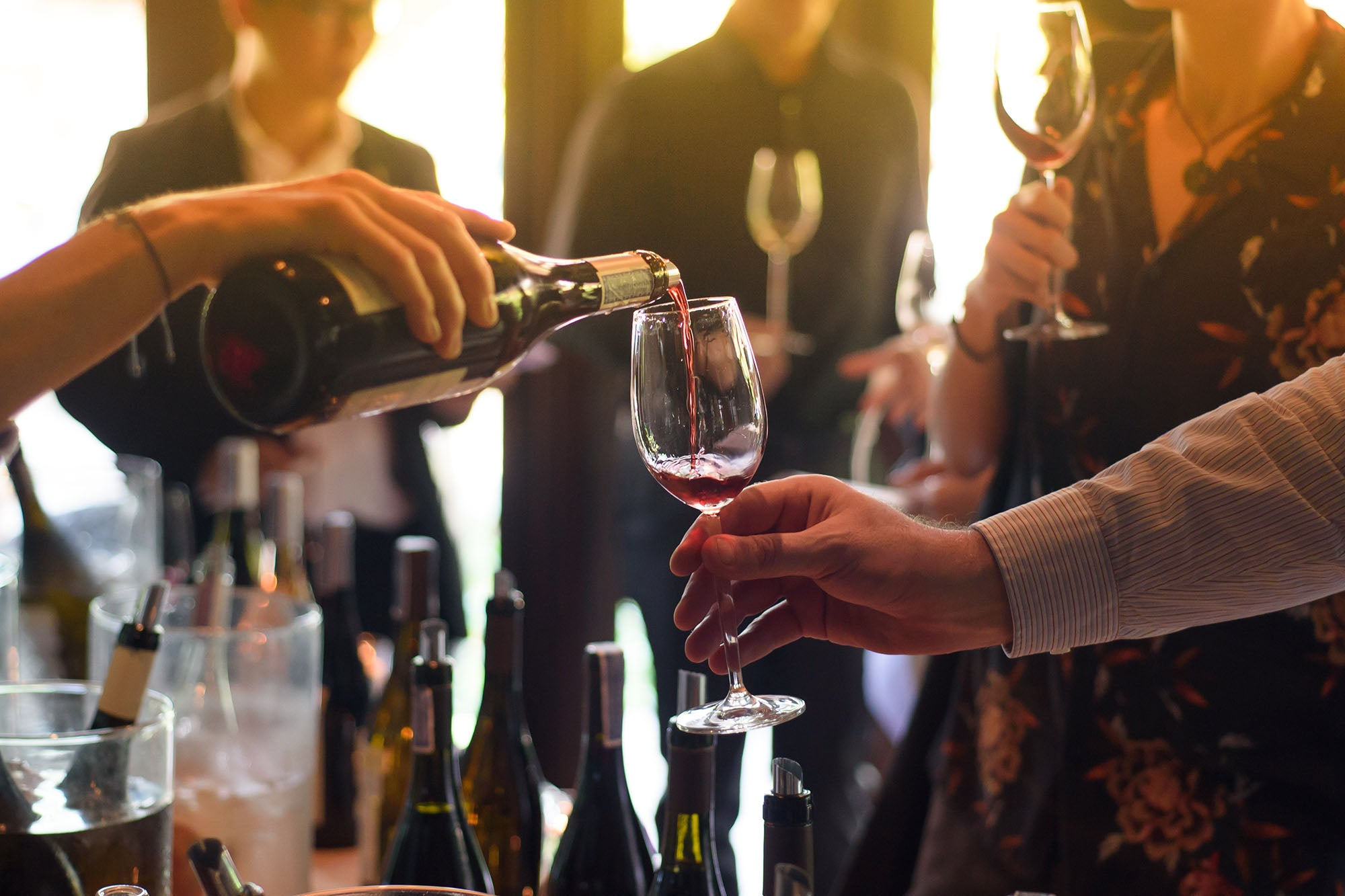 How to Host Your Own Wine-Tasting Party: A Brief Guide