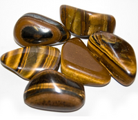 Tiger Eye (Golden)