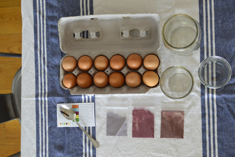 Eco-Kids Natural Egg Dyeing Kit