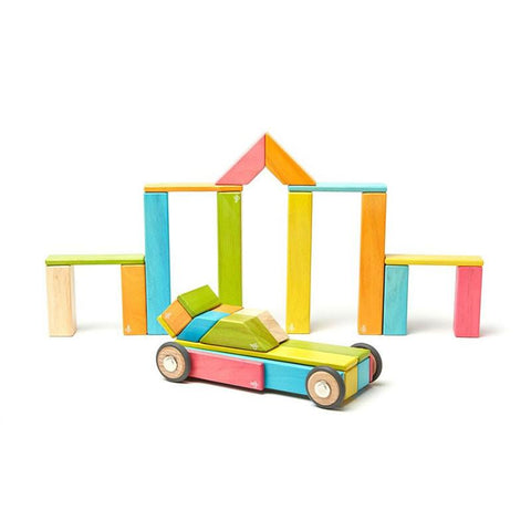 Tegu Magnetic Blocks 42 piece