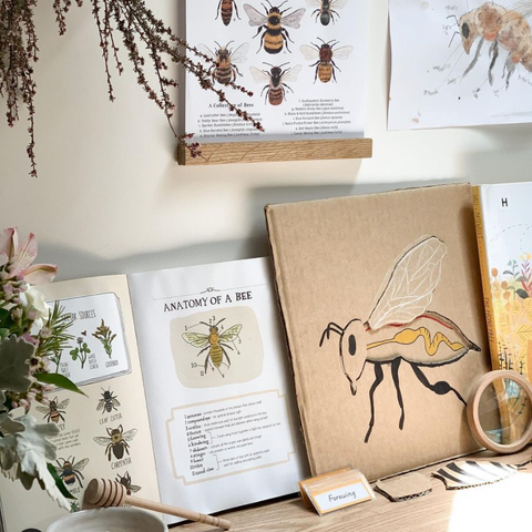 A honeybee homeschool unit with books and art projects