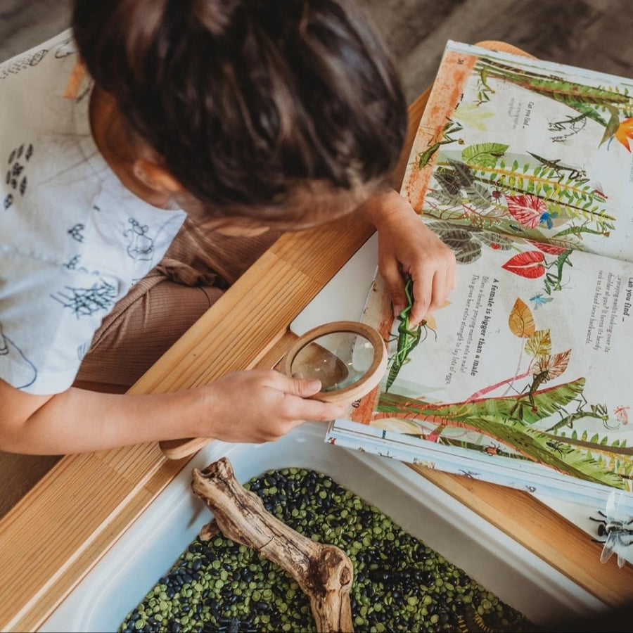 Around the Day - Waldorf Homeschooler - Academic Daily Planner - Weekly - Bella Luna Toys