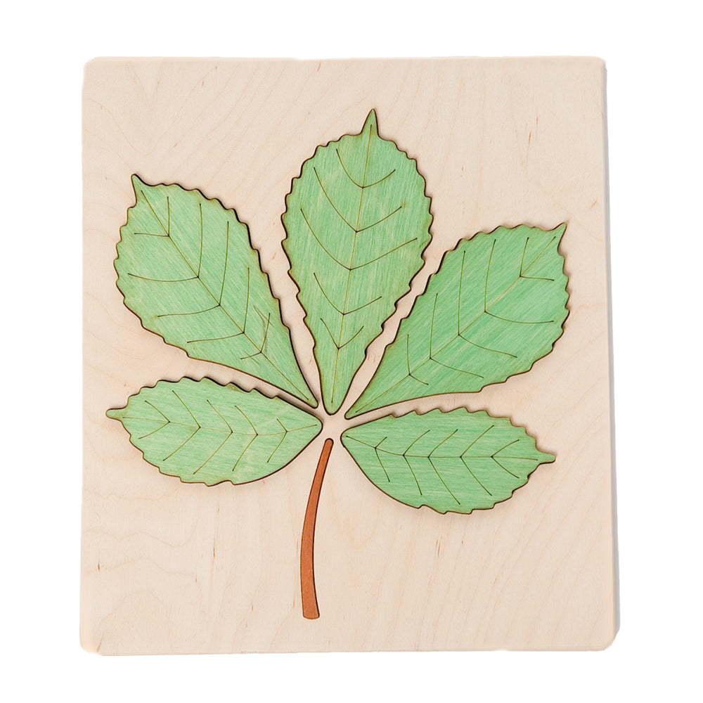 ABAfactory - Wooden Jigsaw Puzzle - Chestnut Tree Leaf - Green - Bella Luna Toys