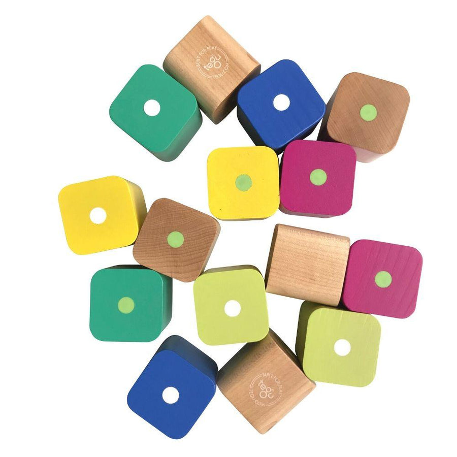 Tegu Baby's First Wooden Magnetic Blocks - 15 Piece Set - Both Sides - Bella Luna Toys