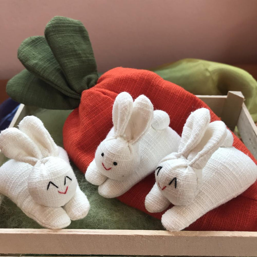 3 Bunny Rabbits in a Carrot Pouch Toy - Bella Luna Toys