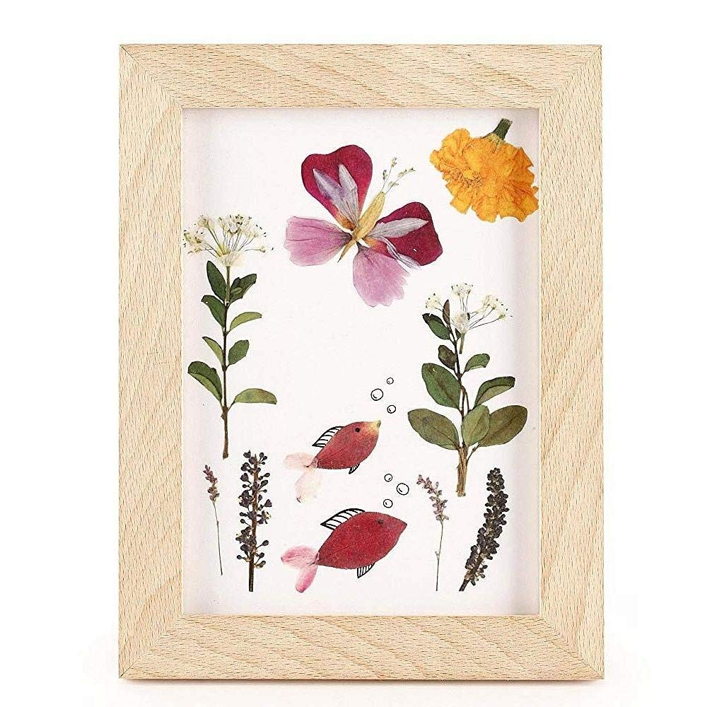 Kikkerland Huckleberry Pressed Flower Wooden Frame - Bella Luna Toys