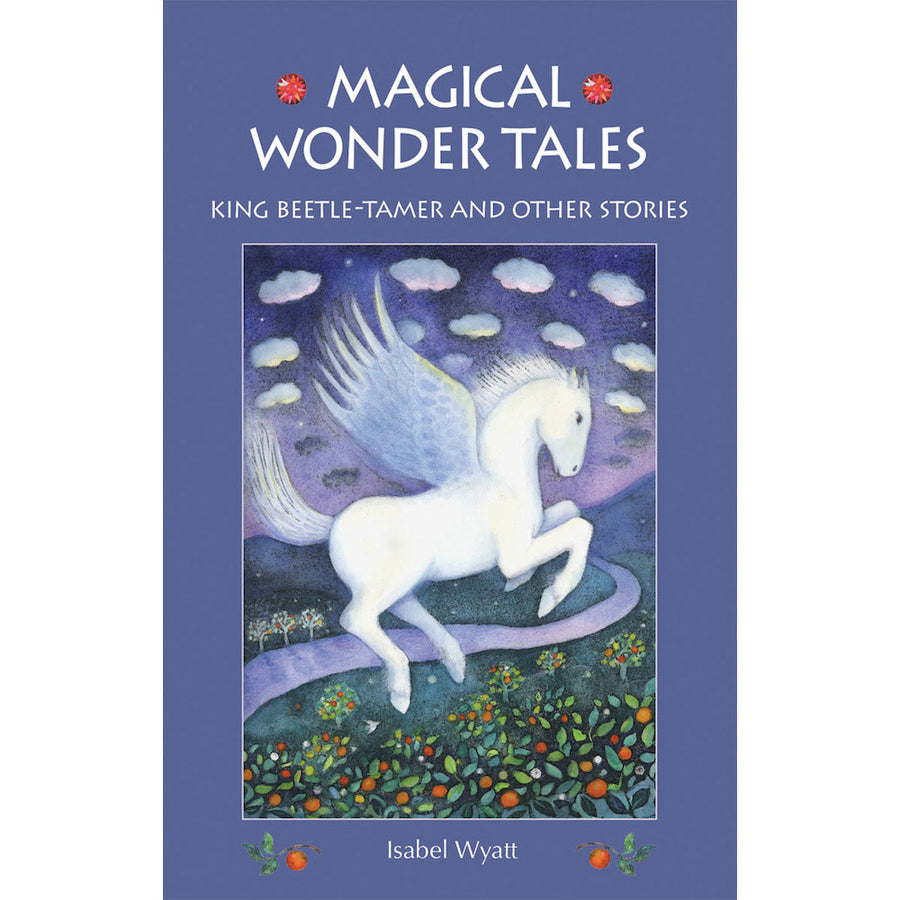 Magical Wonder Tales: King Beetle Tamer and Other Stories by Isabel Wyatt