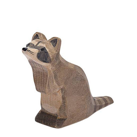 Ostheimer Raccoon, Sitting