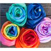Silk Scapes Colors - Sarah's Silks