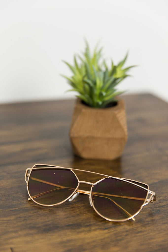 Gold Rimmed Sunnies