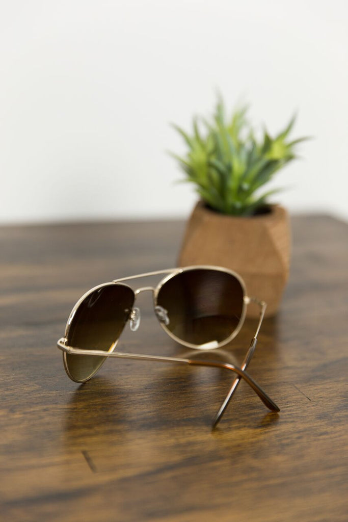 Classic Aviators in Brown