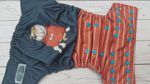 Sherlock Bones (aqua awj & snaps) <br>Traditional, One Size Pocket Diaper<br>Instock and Ready to Ship