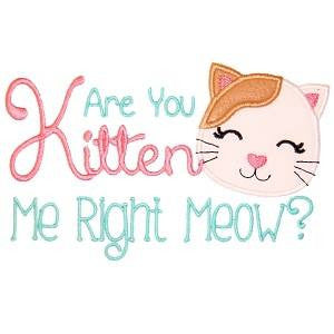 *RESERVED* You Kitten Me? DoD Embroidered *PRE ORDER* <br>Your choice of 2 Colorways (seaspray or light pink)<br>One Size Cloth Pocket Diaper