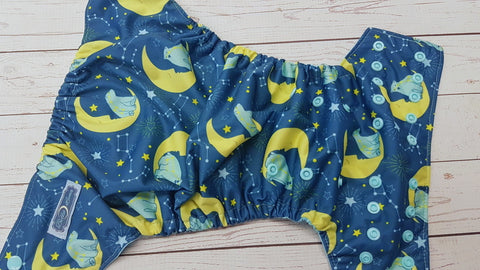 Ursa (seaspray awj & snaps) <br>Traditional, One Size Pocket Diaper<br>Instock and Ready to Ship
