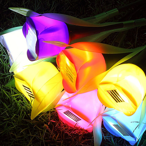 Solar Powered LED Tulip Path Light