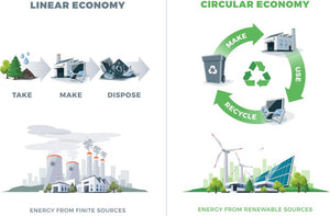 Paper and the Circular Economy: Why Your Parking Tickets & Receipts Rolls are Truly Sustainable