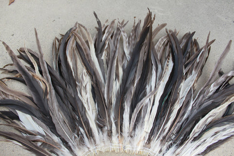 Chinchilla rooster coque tails 11-14 inch length, 25 feathers, natural brown