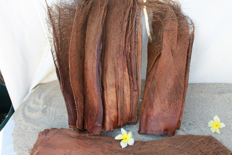 Coconut bark or fiber, for Polynesian costumes