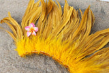 Coque feathers 6-8 inch, rooster coque feathers for Tahitian Polynesian costumes