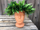 Tahitian or Hula dance head hei, half size, lei po'o, full or half