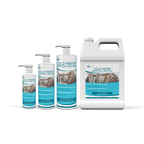 Aquascape  Cold Water Beneficial Bacteria (Liquid)