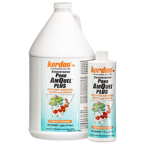 Kordon Concentrated Pond AmQuel Plus 1 Gallon (3.78 Liters / 128 FL OZ)