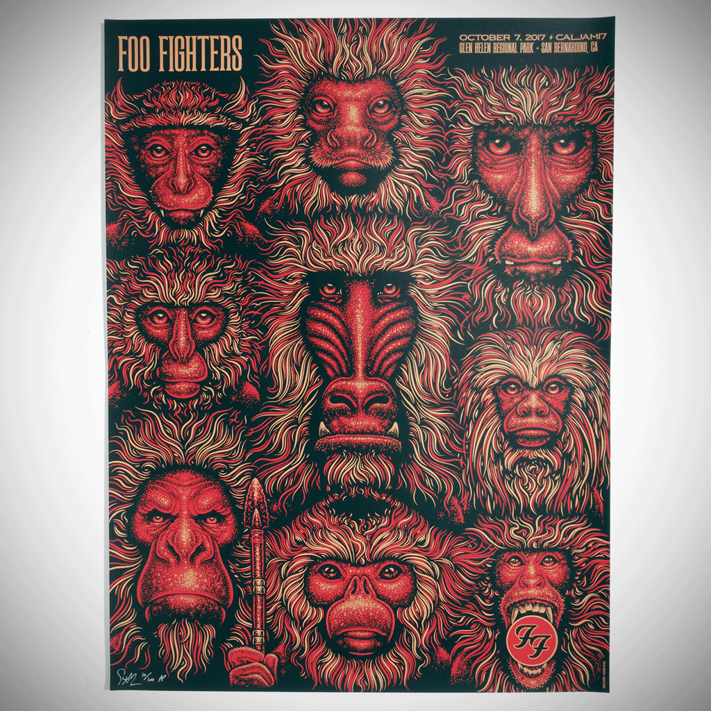 1 left foil - Foo Fighters - CA