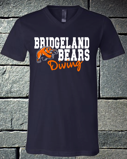 Bridgeland Bears Dive 2020