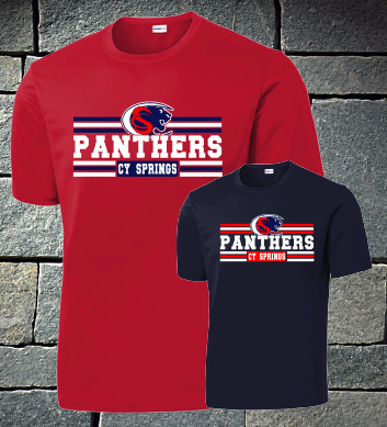 Panthers with lines - mens dri fit and t-shirt