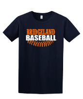 Bridgeland Baseball with laces