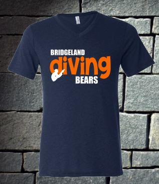 Bridgeland Bears Diving
