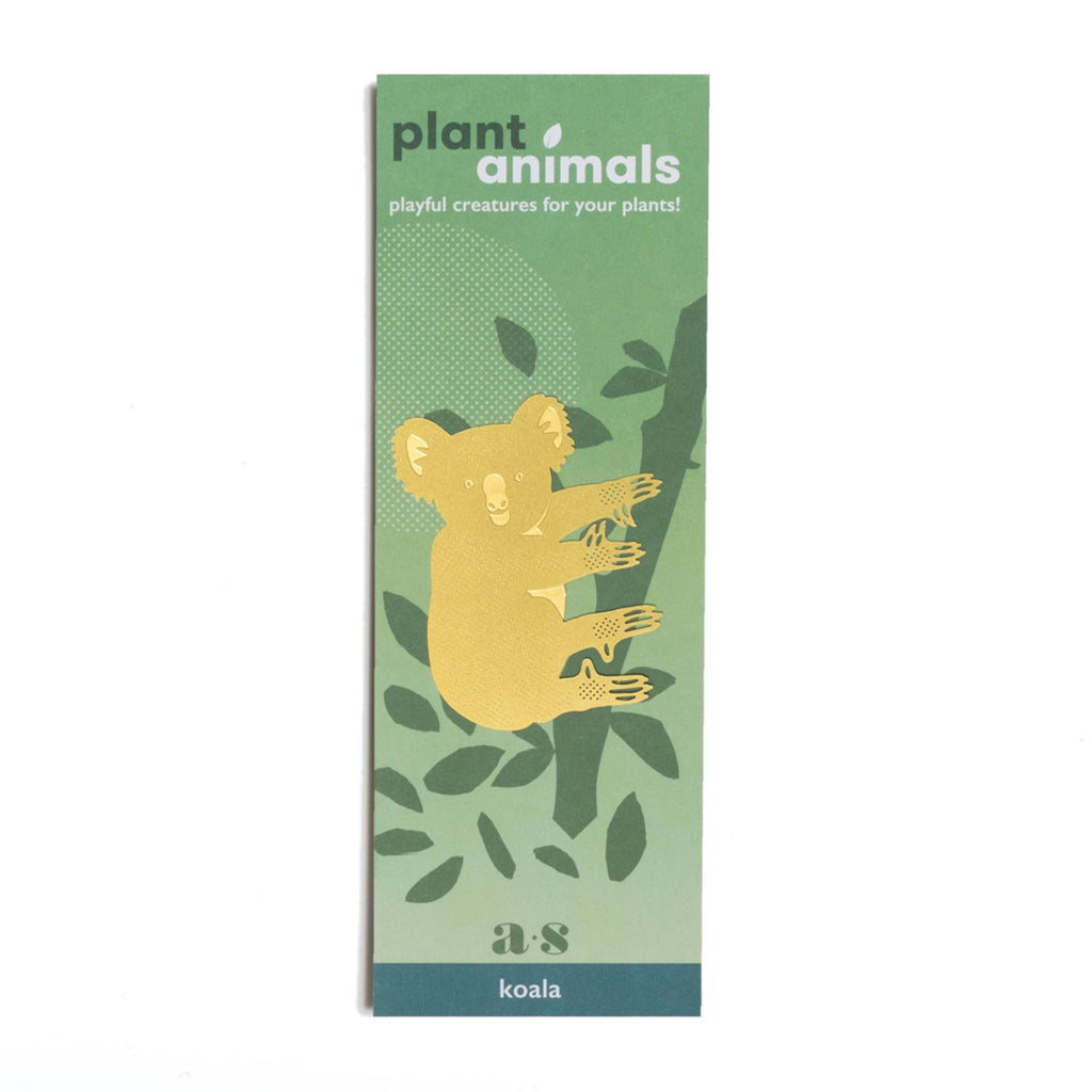 Another Studio for Design Ltd - Plant Animal - Koala Bear