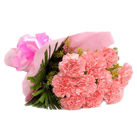 Bunch of 20 Pink Carnations