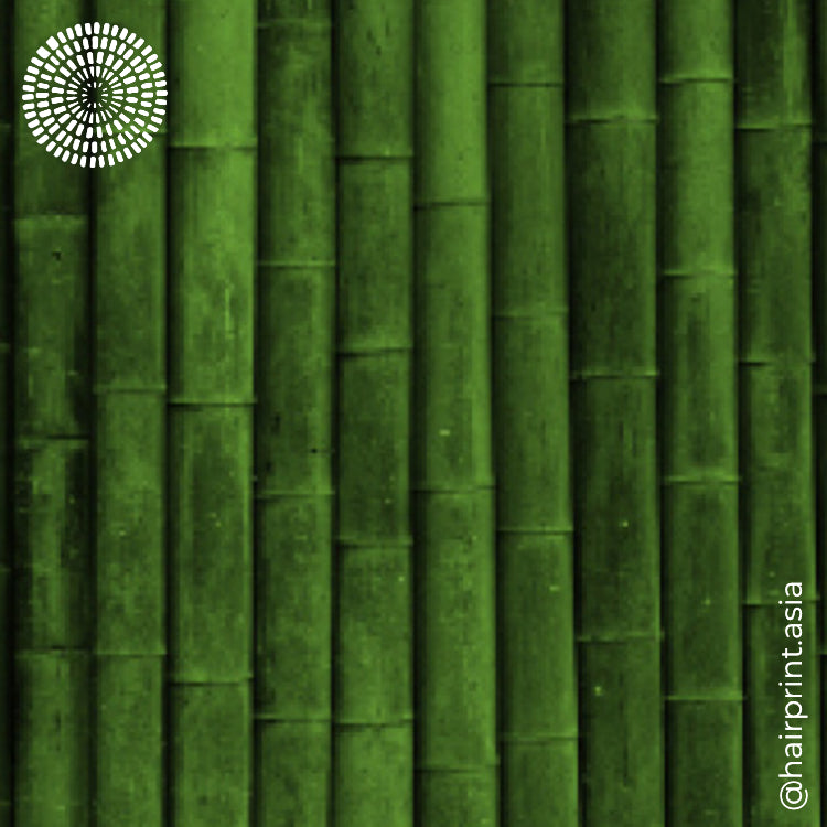 Bamboo-zled