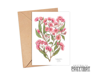 Pink Flowering Gum Card
