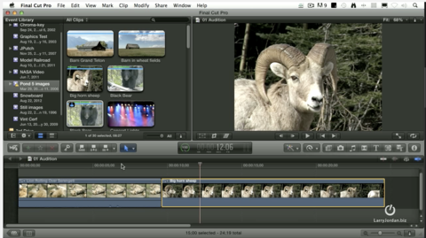 Create Auditions in Final Cut Pro X - compare clips