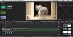 Final Cut Pro X - Ghost Dog Effect