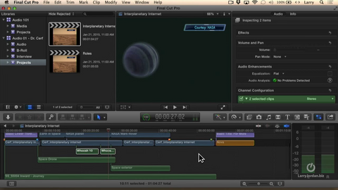 LJ Examine Using Roles in FCP X