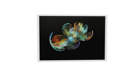 Framed Picture: Real3D Motion Model