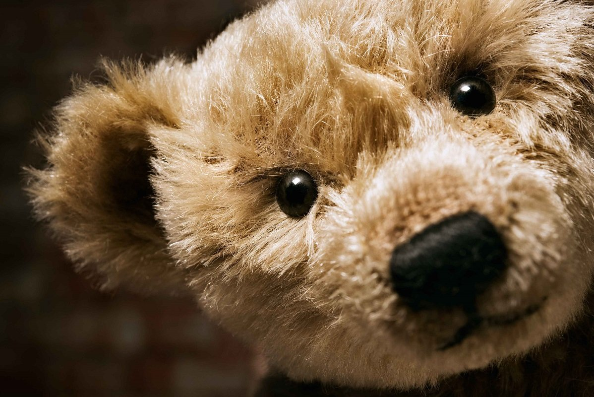 Shop Online Steiff Teddy Bears