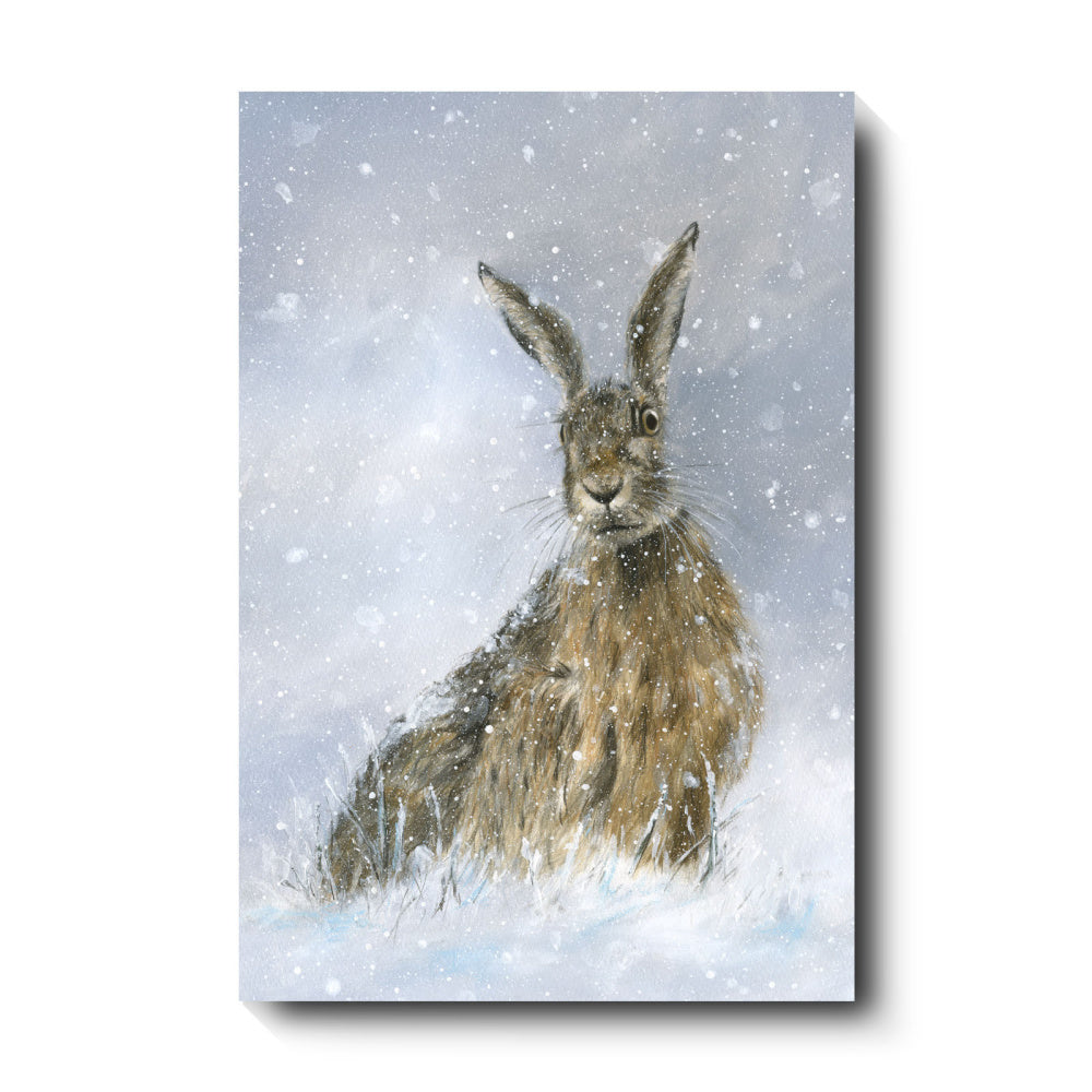 David Pooley Art Winter Hare Canvas 61 x 41cm