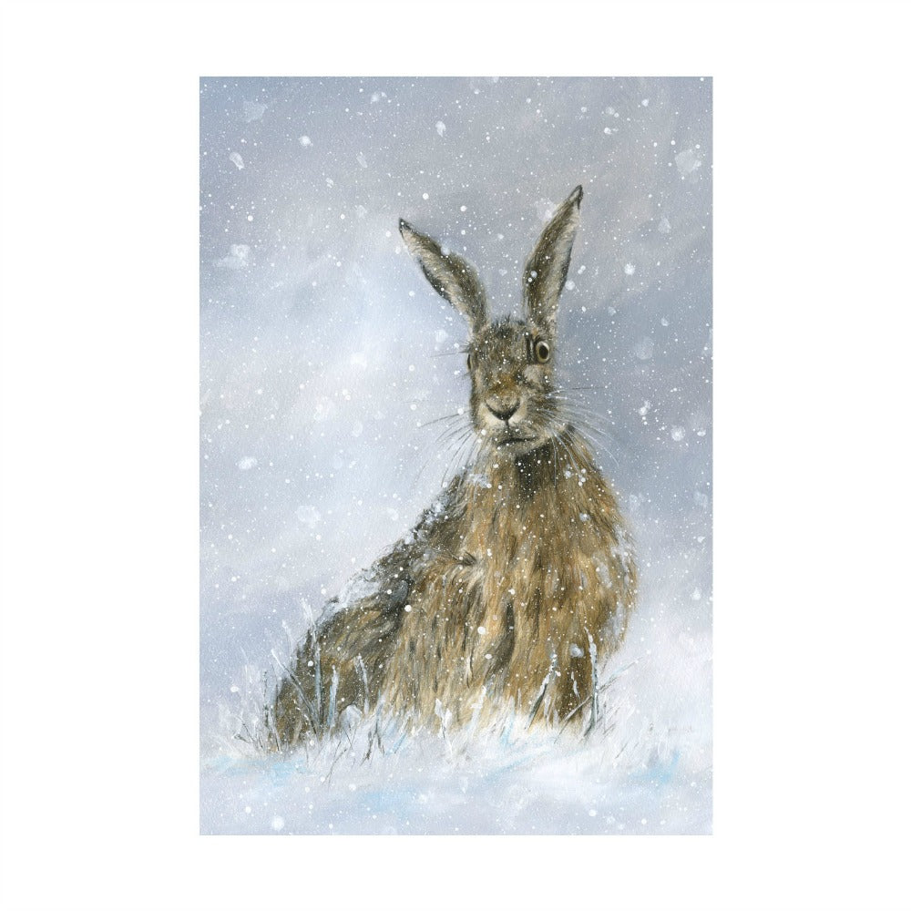 David Pooley Art Winter Hare A3 Print