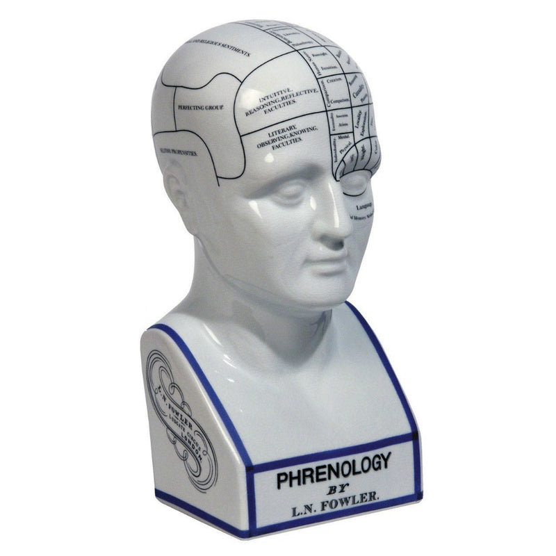 Authentic Models - Phrenology Head