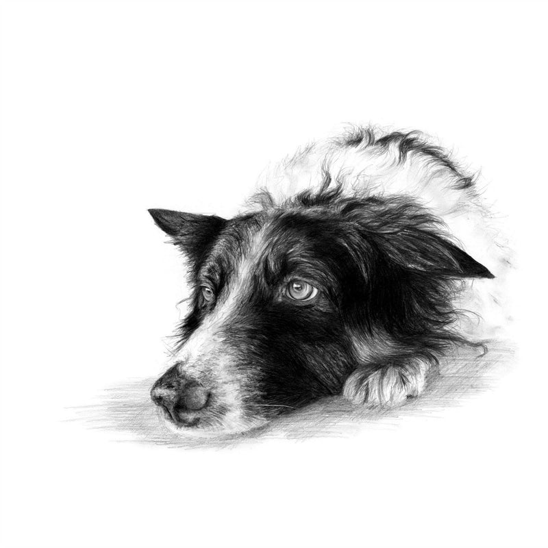 David Pooley Art A Man's Best Friend A3 Print
