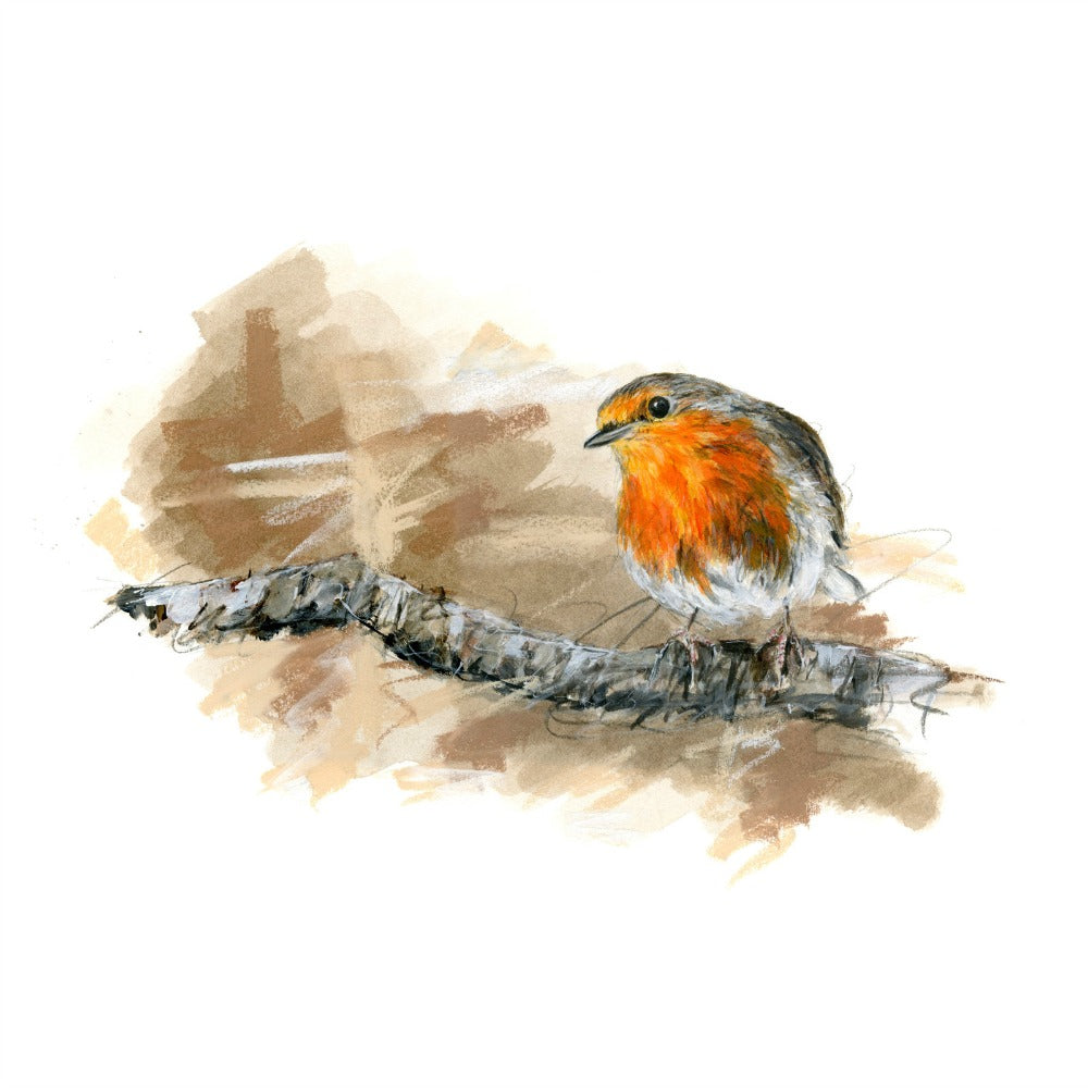 David Pooley Art Robin A3 Print
