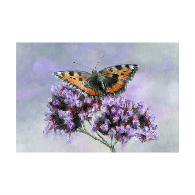 David Pooley Art Small Tortoiseshell A3 Print