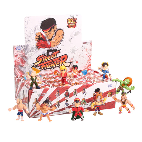 The Loyal Subjects Street Fighter Wave 1 Blind Box