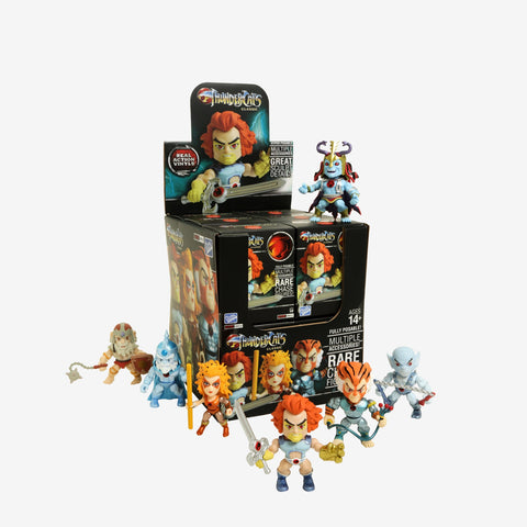 The Loyal Subjects Thundercats Wave 1 Blind Box