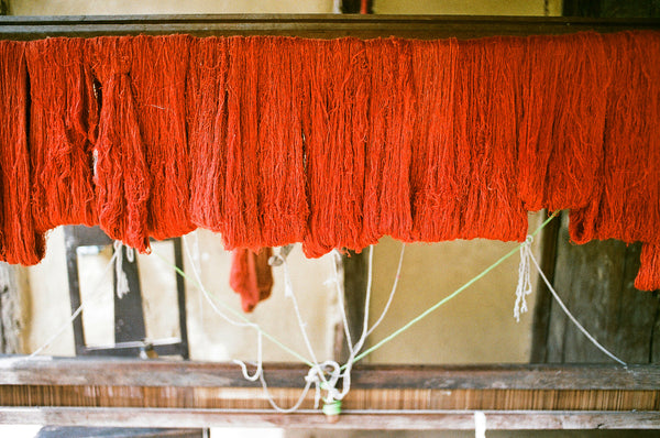 Natural dyes in Assam with peace silk. Indian madder called Manjistha to yield red shades.
